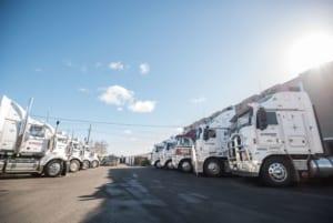 more-trucks